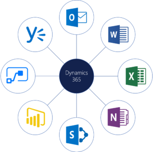 MS Dynamic 365 Migrations & Integrations